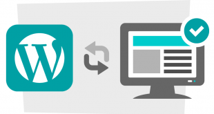Plugin Yang Dibutuhkan di Wordpress SelfHost